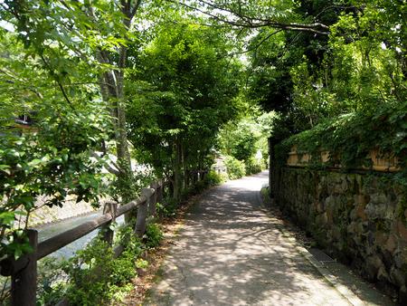 plassen: Beautiful Panorama raining season in Yufuin, Japan