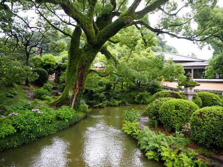 Dazaifu Tenmangu shrine, Raining season, Japan