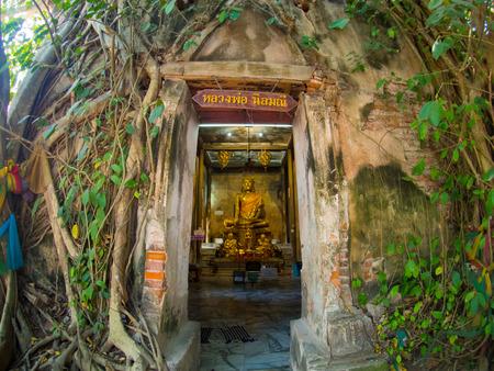 Tree root covering ancient temple : Wat Bang Kung at Amphawa in Samut Songkhram, Thailand Stock Photo