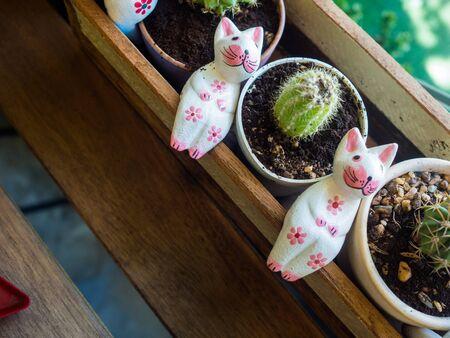 cute cat statue with cactus.