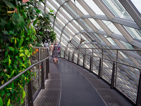 sep: waterfall in Cloud Forest Dome at Gardens by the bay, Singapore-12 SEP. 2017 Editorial