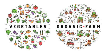 Agriculture farming and Vegetables flat infographics. Organic food symbols