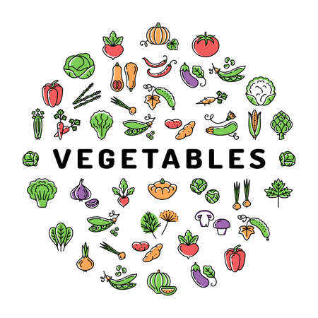 Vegetable icon circle infographics colorful banner. Mega set of isolated vegetables symbols