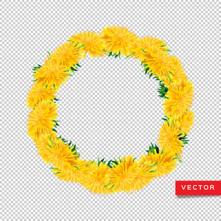 Wreath dandelions isolated transparent background, Floral icon realistic yellow dandelions. All objects are editable, Vector design 일러스트