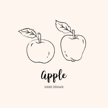 Apple drawing Vector hand drawn apples. Sketch of apples on white background, Vector isolated icons set Illusztráció