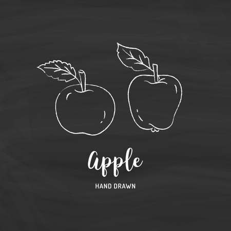 Apple drawing Vector hand drawn apples. Sketch of apples with chalk on a blackboard, Vector isolated icons set