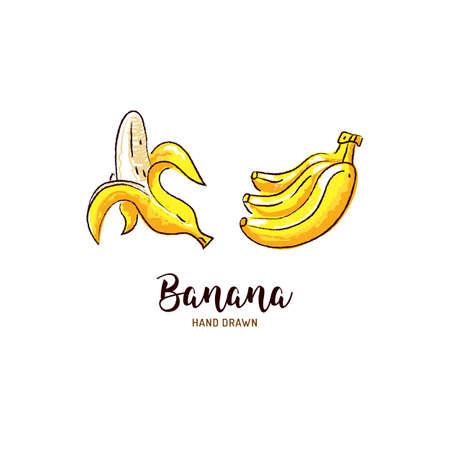 Banana drawing Vector hand drawn bananas, Watercolor colorful bananas. Vector isolated icons set Illusztráció