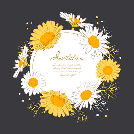 Flowers card Chamomile background Daisy wreath. Blooming daisies on a on a dark background. Elegant floral card with text space. Vector isolated illustration Illusztráció