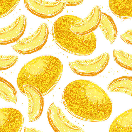 Melon seamless pattern. Ripe Melons and Melon Slices on White Background. Vector hand drawn illustration