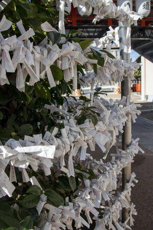Japanese Omikuji, Fortune Paper in the Shrine