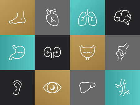 limbs: Set of modern Body parts plain simple thin line design icons and pictograms. Eyes, ears, limbs, heart, blood-vessels, lungs, brain, bladder, liver, stomach, kidneys, locomotor system, intestinal tract, pancreas Illustration