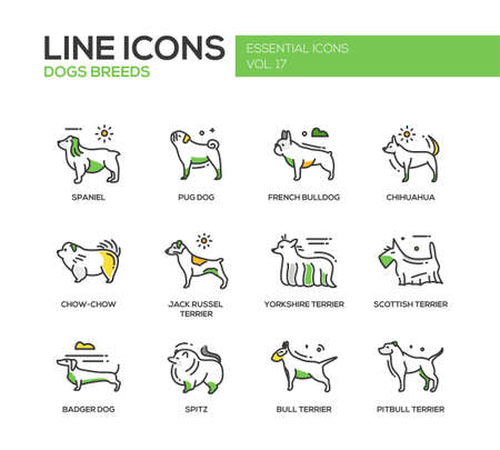 Set of modern vector line design icons and pictograms of domestic dogs breeds. Spaniel, french bulldog, chihuahua, chow-chow, jack russel terrier, yorkshire, scottish terrier, badger, spitz, pitbull Illustration