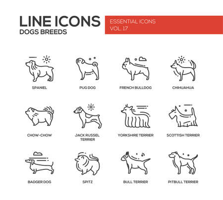 lapdog: Set of modern vector plain line design icons and pictograms of domestic dogs breeds. Spaniel, french bulldog, chihuahua, chow-chow, jack russel terrier, yorkshire, scottish terrier, badger, spitz, pitbull Illustration