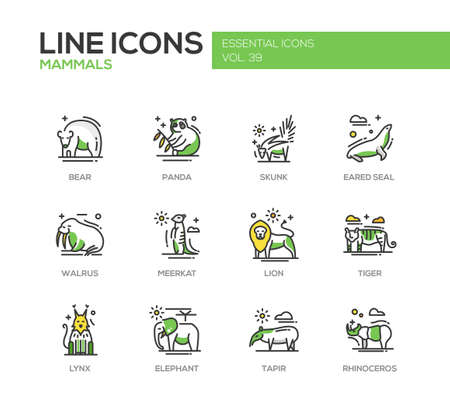mammals: Mammals - set of modern vector line design icons and pictograms of animals. Bear, panda, skunk, eared seal, walrus, meerkat, lion, tiger, lynx, elephant tapir rhinoceros