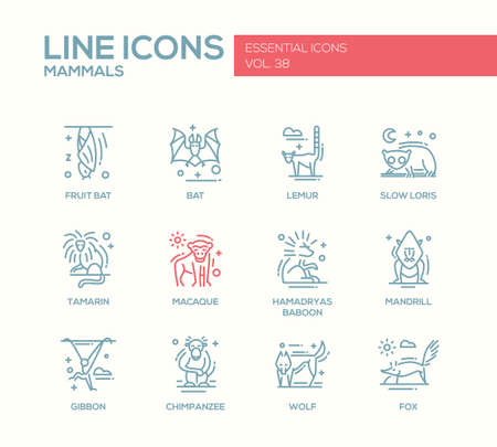 Mammals - set of modern vector line design icons and pictograms of animals. Bat, lemur, slow loris, tamarin, macaque, hamadryas baboon, mandrill, gibbon, chimpanzee, wolf fox Illustration