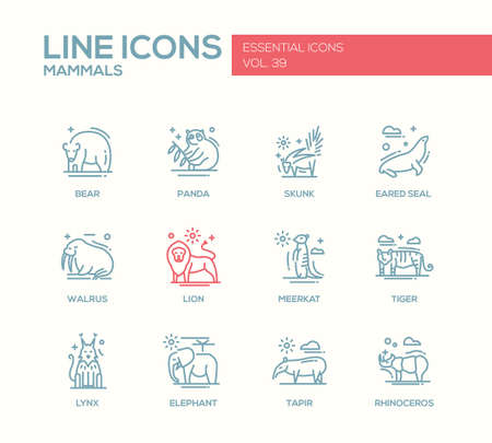 mammals: Mammals - set of modern vector plain line design icons and pictograms of animals. Bear, panda, skunk, eared seal, walrus, meerkat, lion, tiger, lynx, elephant tapir rhinoceros