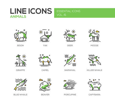 porcupine: Animals - set of modern vector line design icons and pictograms of animals. Bison, yak, deer, moose, giraffe, camel, narwhal, killer whale, blue whale, beaver porcupine capybara Illustration
