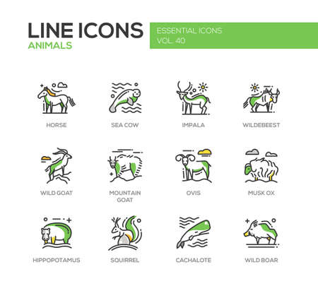 Animals - set of modern vector line design icons and pictograms of animals. Horse, sea cow, impala, wildebeest, wild, mointain goat, ovis, musk ox, hippopotamus, squirrel, cachalote boar