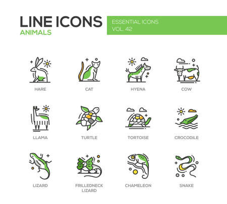 africa chameleon: Animals - set of modern vector line design icons and pictograms of animals. Hare, cat, hyena, cow, llama, turtle, tortoise, crocodile, lizard, frilledneck lizard, chameleon, snake Illustration