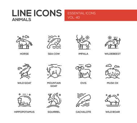 horse sea: Animals - set of modern vector plain line design icons and pictograms of animals. Horse, sea cow, impala, wildebeest, wild, mointain goat, ovis, musk ox, hippopotamus, squirrel, cachalote boar