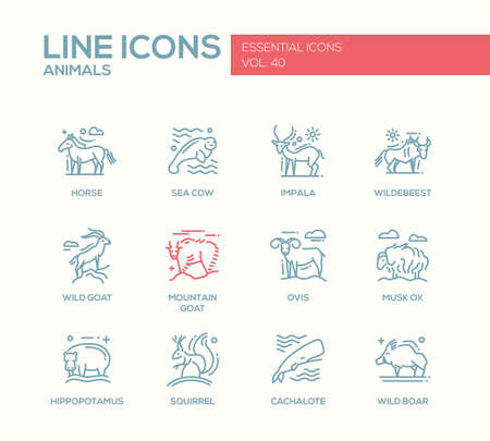 horse sea: Animals - set of modern vector line design icons and pictograms of animals. Horse, sea cow, impala, wildebeest, wild, mointain goat, ovis, musk ox, hippopotamus, squirrel, cachalote boar
