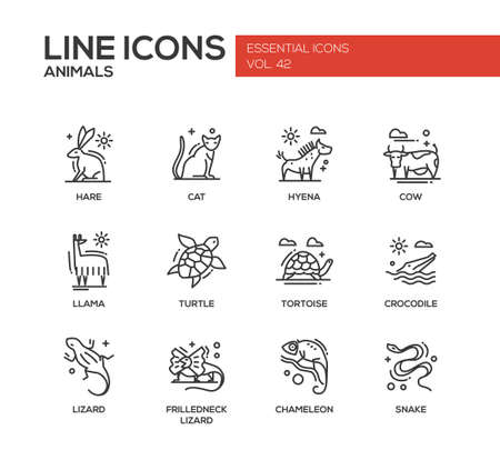 africa chameleon: Animals - set of modern vector plain line design icons and pictograms of animals. Hare, cat, hyena, cow, llama, turtle, tortoise, crocodile, lizard, frilledneck lizard chameleon snake