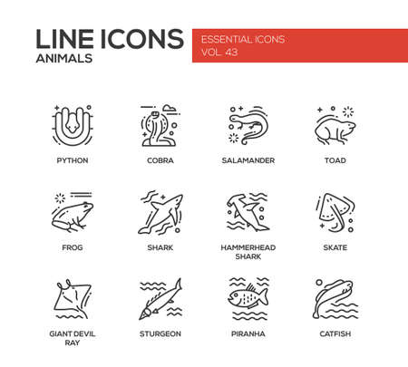 hammerhead: Animals - set of modern vector plain line design icons and pictograms of reptiles and fish. Python, cobra, salamander, toad, frog, shark, hammerhead shark, skate, giant devil ray, sturgeon, piranha, catfish Illustration