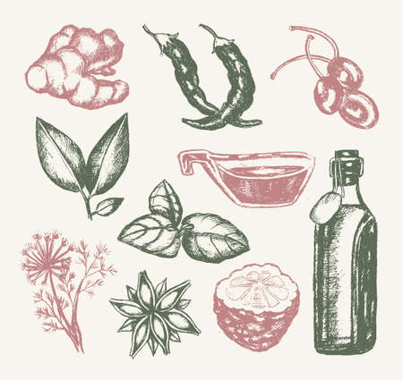 Flavoured Products - illustration of drawn vintage composition