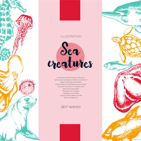 Sea Creatures - color drawn vintage banner template.