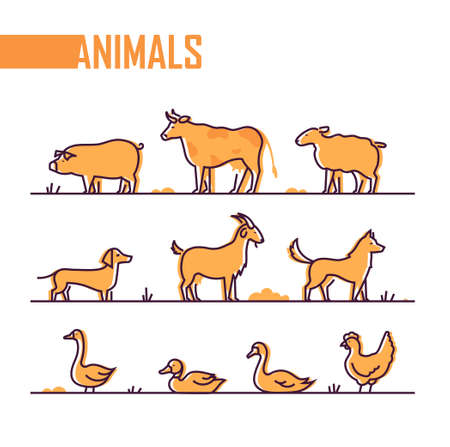 Set of farm animals - line design style colorful illustration on white background. A pig, cow, goat, duck, sheep, dogs, goose, swan, chicken. Perfect as visual aid, poster, sticker  イラスト・ベクター素材