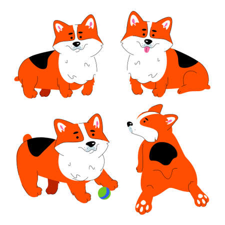 Cute Welsh Corgi dog - modern flat design style set of characters isolated on white background. A collection of four images of a pet, puppy in various positions, sitting, standing, playing with a ball