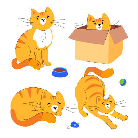 Cute ginger cat - flat design style set of characters isolated on white background. A collection with a pet in different positions, at the plate, hiding in the box, sleeping, sitting and stretching