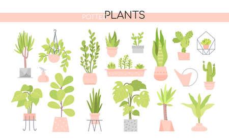 Topfpflanzensammlung - Satz von Vektorelementen Vektorgrafik