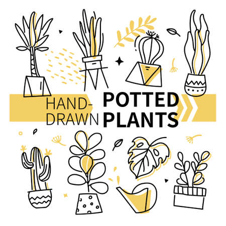 Hand-drawn potted plants collection - set of vector elements on white background. Decorative linear flowers and trees in different pots. Beautiful houseplants, monstera, ficus, zamioculcas, cacti
