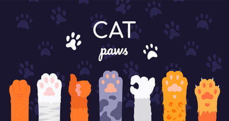 Cat paws collection - flat design style illustration