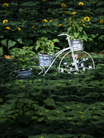 bourgeoisie: Sunflower floats
