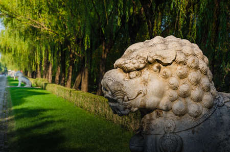 stone lion: Stone lion in the park