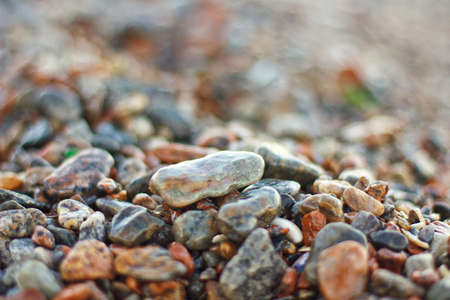 Close view of wet stones on a beach photo