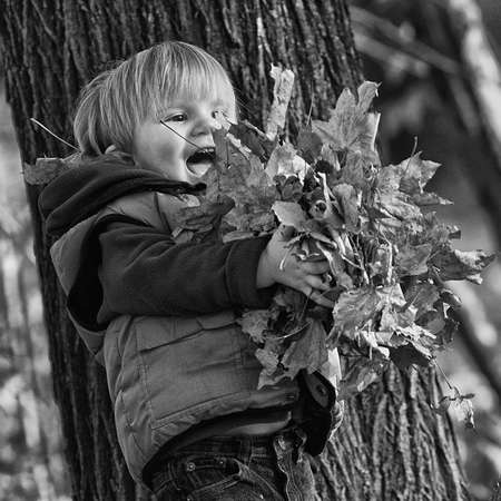 Boy playing with yellow leaves in a park photo