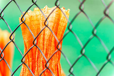 A section of orange tarp behind a chain link fence.
