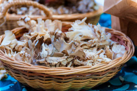 A display of mushrooms in a basket at farmers market