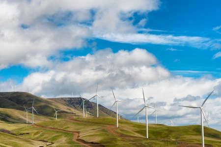 Windturbines stoją wysoko i surowo na tle wysokiego, pustynnego krajobrazu falistych wzgórz w wąwozie rzeki Columbia