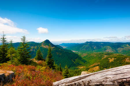 Hiking in Gifford Pinchot National Forest near Mt St. Helens aford vast views such as thic over looking the valley to the northwest. Stock Photo