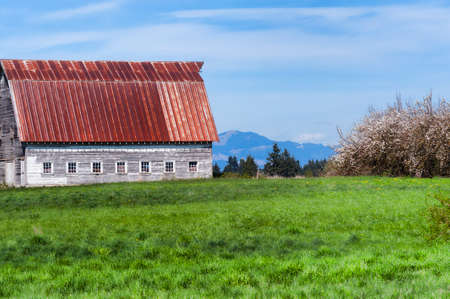 A barn sits on a grassy pasture in this country setting in Rural Washington State Stock Photo