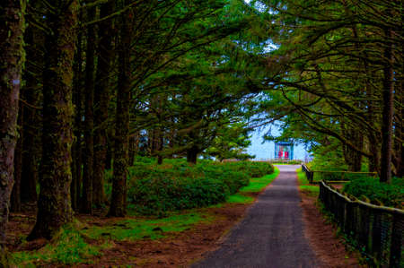 Cape Meares Lighthouse lit in 1890 on the Northern Oregon Coast near Netarts, Oregon. The lighthouses huge light can be seen at the end of the tree line foot path.