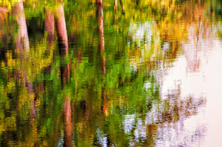 Autumn trees refect in the waters of a creek