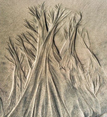 Natures sand art, etched by the receding tide on the Oregon Coast Stock Photo