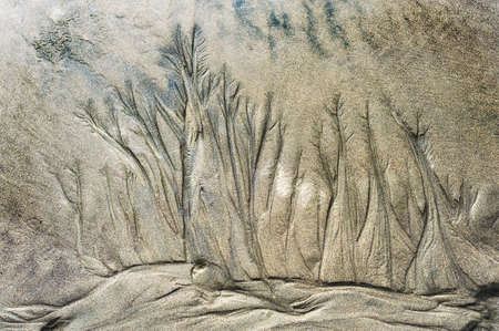 Natures sand art, etched by the receding tide on the Oregon Coast 스톡 콘텐츠