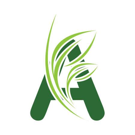 Green eco letters A logo with leaves. /symbol / alphabet / botanical / naturalGreen Letter A With Leaf Logo illustration design template Logo