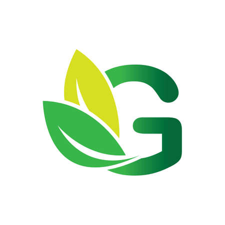 green eco leaf letter G logo illustration design template Reklamní fotografie - 158628331
